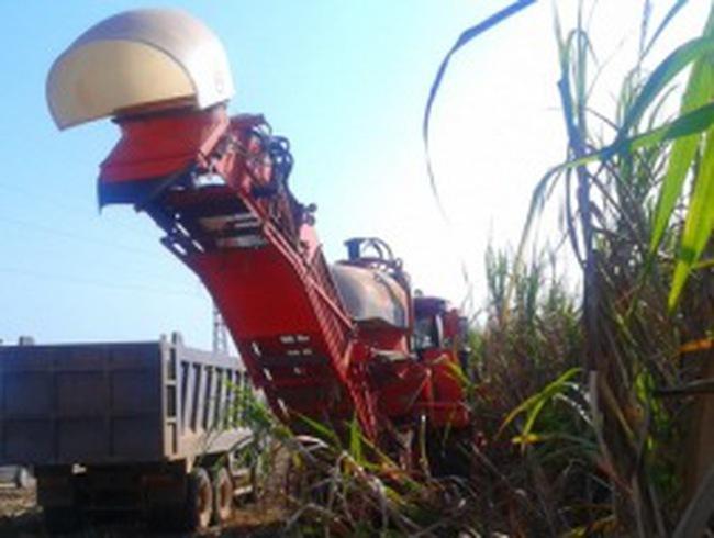 Mía đường ở Lào đi vào hoạt động, HAG phơi phới kỳ vọng?