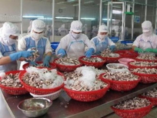 Incomfish: Doanh thu tăng mạnh, lãi chưa đầy 1 tỷ đồng 9 tháng đầu năm