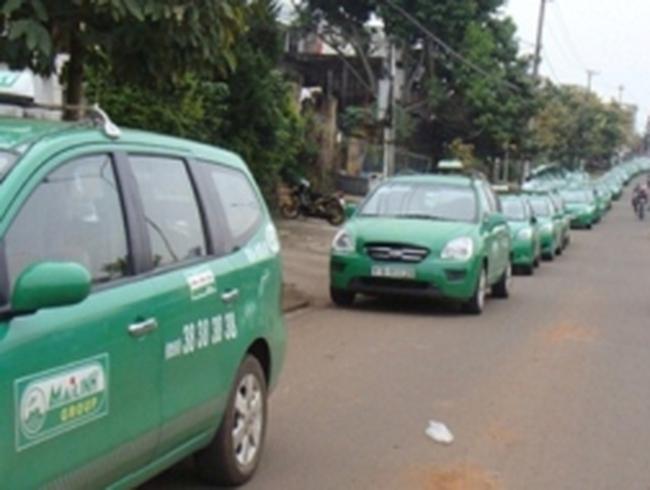 Lái xe taxi Mai Linh xếp hàng dài đình công