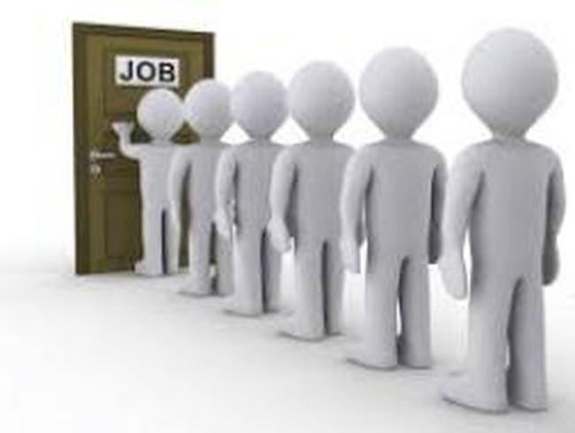 """Công ty bị Worldbank """"cấm cửa"""" vừa...đăng tin tuyển dụng"""