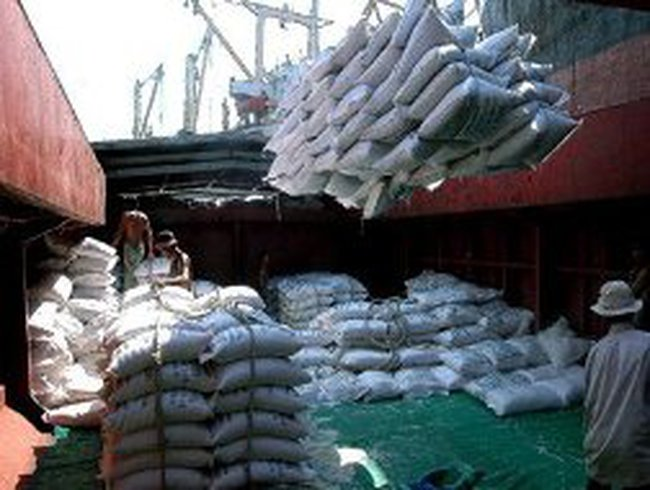 Mưa kéo dài, doanh nghiệp mua gạo tạm trữ lo lắng
