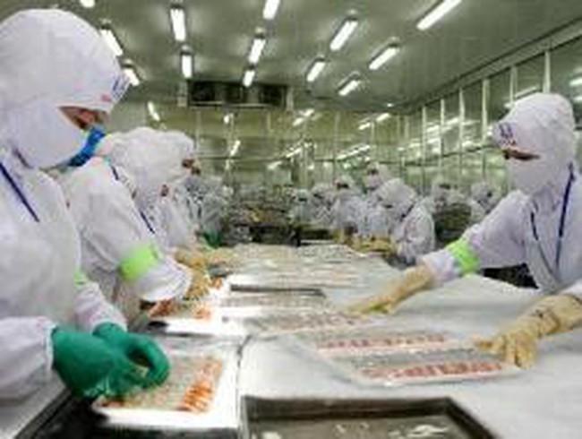Mexico ngừng nhập khẩu tôm từ Việt Nam