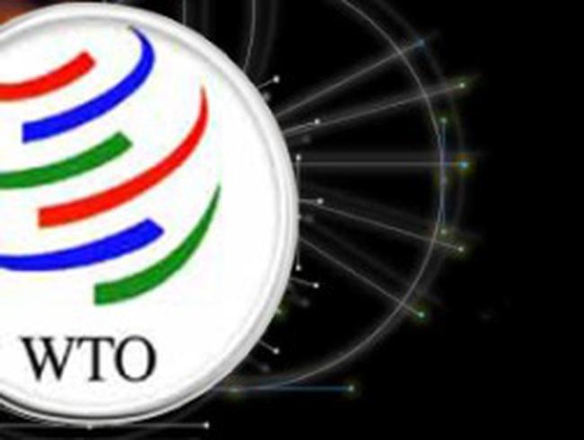 [Slide] Trải nghiệm Việt Nam từ khi gia nhập WTO
