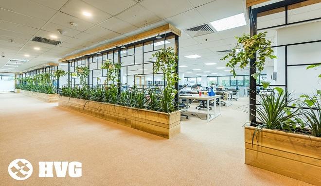 Độc đáo không gian văn phòng tràn ngập cây xanh tại Việt Nam