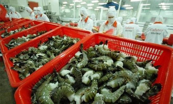 Con tôm ngày càng bị các nước nhập khẩu kiểm tra chặt