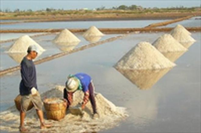 Bà Rịa - Vũng Tàu tồn đọng gần 92.000 tấn muối