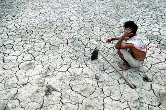 Đau lòng khi biết nguyên nhân sâu xa, dồn đẩy hàng loạt nông dân Ấn Độ tự tử