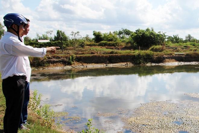 Nông dân Cà Mau 'mất' 100 tỷ đồng hỗ trợ thiên tai