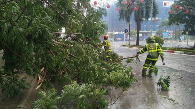 """Cơn bão số 1 """"cuốn trôi"""" của Hà Nội gần 200 tỉ đồng"""