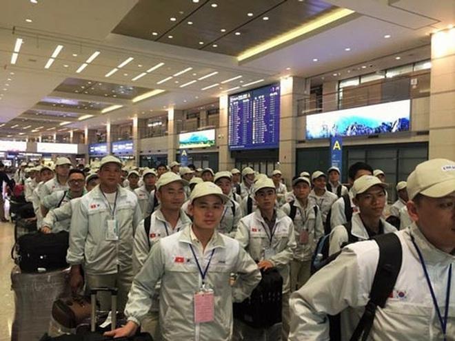 """Xuất khẩu lao động sang Hàn quốc: 10 địa phương bị """"cấm cửa"""""""