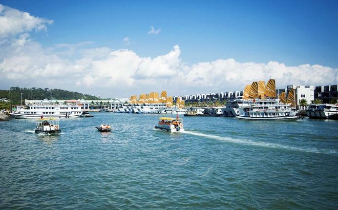 Quảng Ninh nói gì về việc thu phí qua Cảng tàu khách quốc tế Tuần Châu?