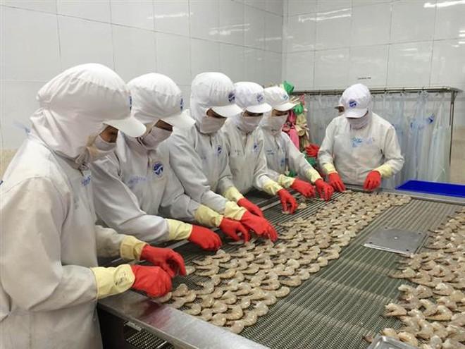 Nhiều mặt hàng xuất khẩu sang Nga được hưởng ưu đãi từ tháng 10