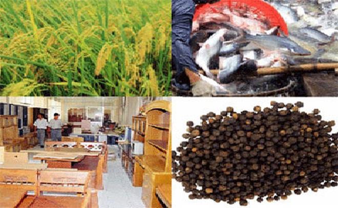 Xuất khẩu nông sản: Cần thông tin thông suốt