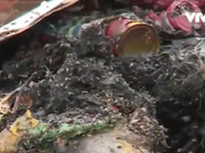 """Hưng Yên: """"Núi"""" rác thải lưu cữu gây ô nhiễm môi trường nghiêm trọng"""