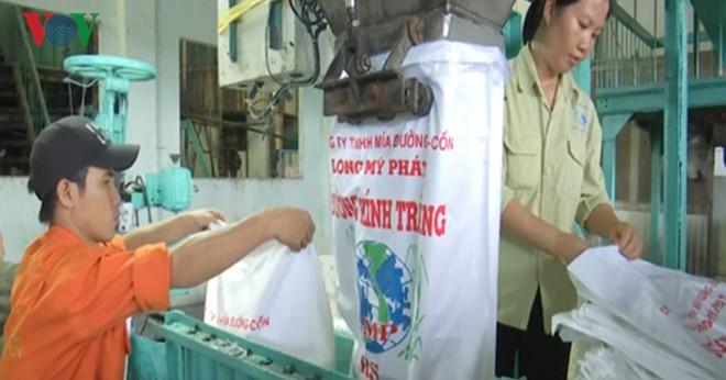Hậu Giang: Nhà máy đường ngưng hoạt động vì thiếu nguyên liệu