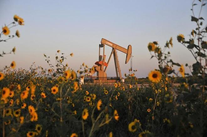 Tồn kho dầu Mỹ giảm mạnh đẩy giá dầu tăng vọt