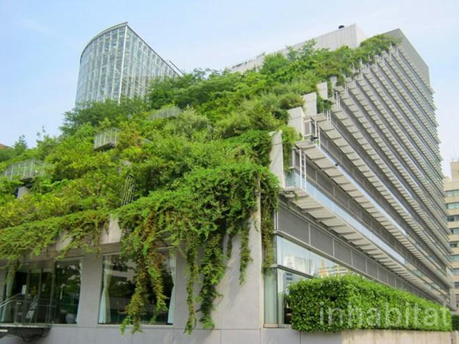 Ngắm những tòa cao ốc phủ kín cây xanh