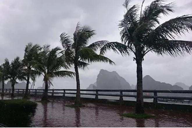 Năm 2017, có khoảng 13-15 cơn bão và áp thấp nhiệt đới trên Biển Đông