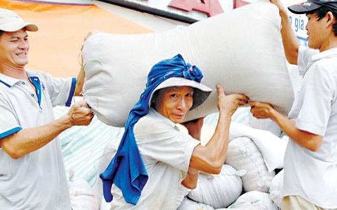 Xuất khẩu gạo 2017 dự báo sẽ tăng