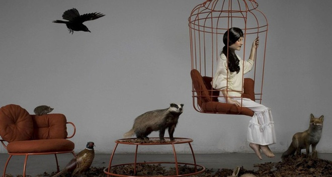 Tốt nghiệp Ngoại thương, Kinh tế, đi học thạc sỹ, vào làm công chức nhà nước: Nỗ lực cống hiến hay chọn sống cuộc đời nhàn hạ như một chú chim trong lồng?
