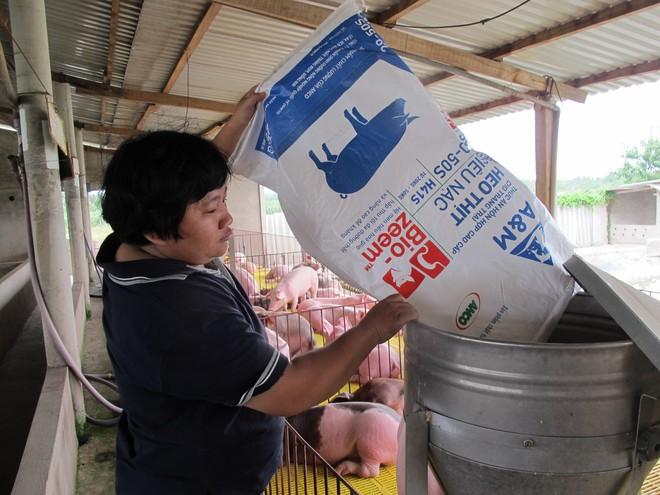 Thành công chuỗi Feed-Farm-Food, Masan đạt lợi nhuận cao nhất từ khi niêm yết