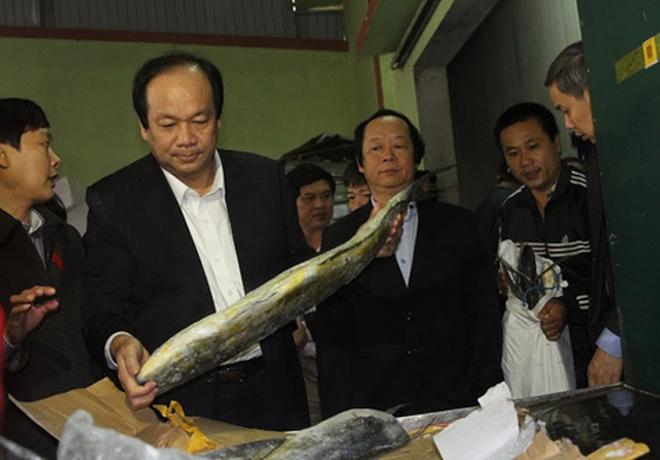 Đã cấp 4.680 tỉ đồng bồi thường vụ Formosa