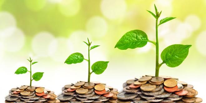 """Điều gì đã khiến cổ phiếu penny đồng loạt """"tăng bằng lần"""" chỉ trong thời gian ngắn?"""