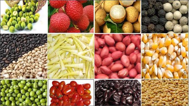 Bộ Công Thương gửi công hàm đề nghị Ấn Độ bãi bỏ việc tạm dừng nhập khẩu một số mặt hàng của Việt Nam