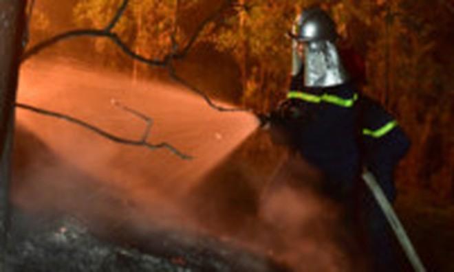 Hà Nội: Điều tra nguyên nhân vụ cháy rừng phòng hộ Nam Sơn