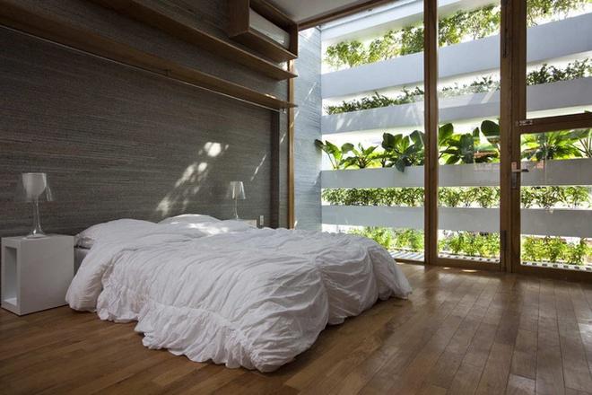 Ngôi nhà để 'sống xanh' giữa lòng Sài Gòn xô bồ