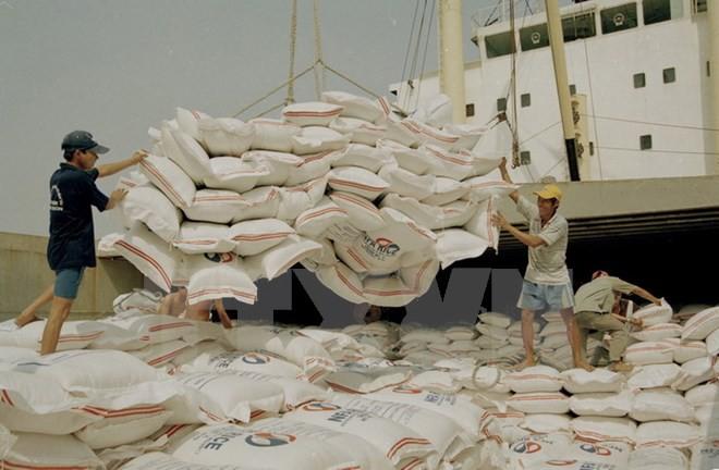 FAO dự báo Việt Nam thuộc tốp 5 nước có sản lượng gạo lớn nhất 2017