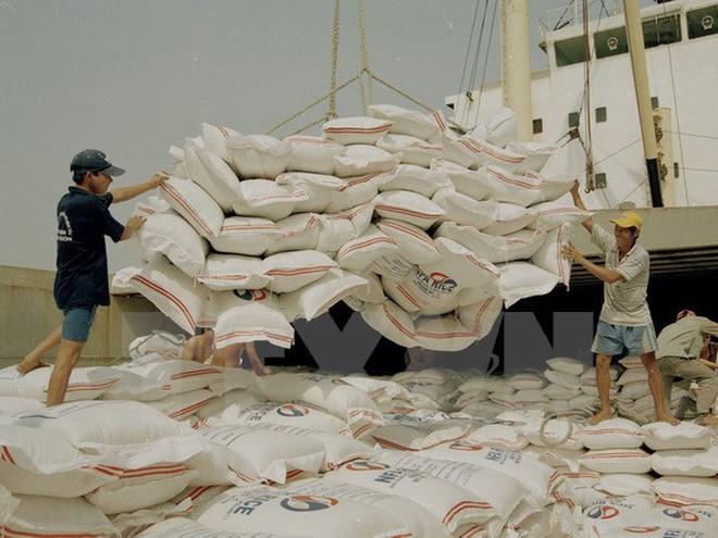 Tìm hướng đi mới để nâng giá trị hạt gạo Việt Nam