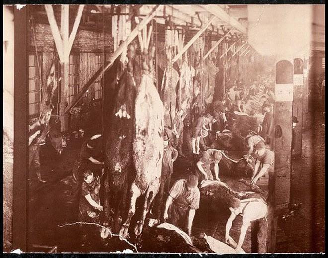 Hơn 100 năm trước, người Mỹ thực hiện an toàn thực phẩm thế nào? - H4