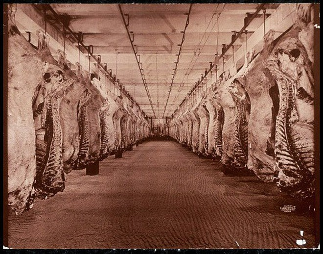 Hơn 100 năm trước, người Mỹ thực hiện an toàn thực phẩm thế nào? - H5