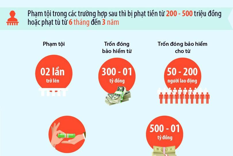 [Infographic]: Từ 2018, chủ doanh nghiệp trốn đóng BHXH có thể ở tù đến 7 năm