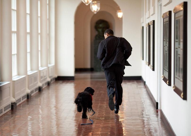 """Những """"năm tháng Obama"""" dưới ống kính phóng viên ảnh của Nhà Trắng"""