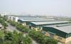 KCN Cao su Bình Long (MH3) chuẩn bị tạm ứng cổ tức bằng tiền tỷ lệ 50%  bietgi.com