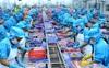 ICAEW: Tăng trưởng kinh tế Việt Nam dự kiến đạt 6,6% trong năm 2020