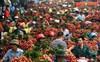 Trung Quốc chỉ mua trái cây Việt Nam… không có lá?