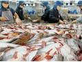 Thực phẩm Việt loay hoay tìm cách chinh phục thị trường nội