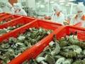 Thay đổi kiểm soát dư lượng kháng sinh thủy sản xuất khẩu Nhật Bản