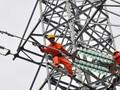 Nhiệt điện Hải Phòng lại lỗ lớn vì lãi vay và tỷ giá