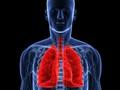 Bạn sẽ giật mình khi xem clip: Điều gì xảy ra với cơ thể khi hút thuốc?