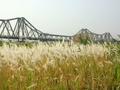 Đề xuất làm công viên đô thị ở bãi giữa sông Hồng