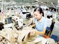 Đề xuất sửa Bộ luật Lao động, tăng giờ làm thêm lên 600 giờ