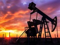 OPEC cắt giảm sản lượng khai thác dầu mỏ do chịu sức ép về tài chính?