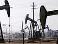Giá dầu chốt tuần giảm đầu tiên sau 5 tuần tăng