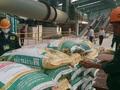 Phân bón Bình Điền vượt 14% kế hoạch lợi nhuận năm 2016 nhờ giá nguyên liệu đầu vào giảm mạnh