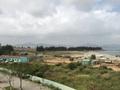 Tập đoàn Temasek của Singapore sẽ đầu tư vào Dự án Khu công viên phần mềm Đà Nẵng