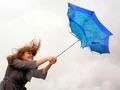 """""""Cơn gió"""" nào đang thổi cổ phiếu Đá Spilit tăng gấp đôi sau nửa tháng?"""